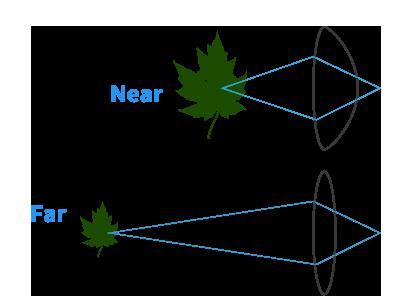 diagram of the human eye lense
